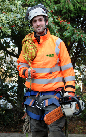 Becoming a Tree Surgeon